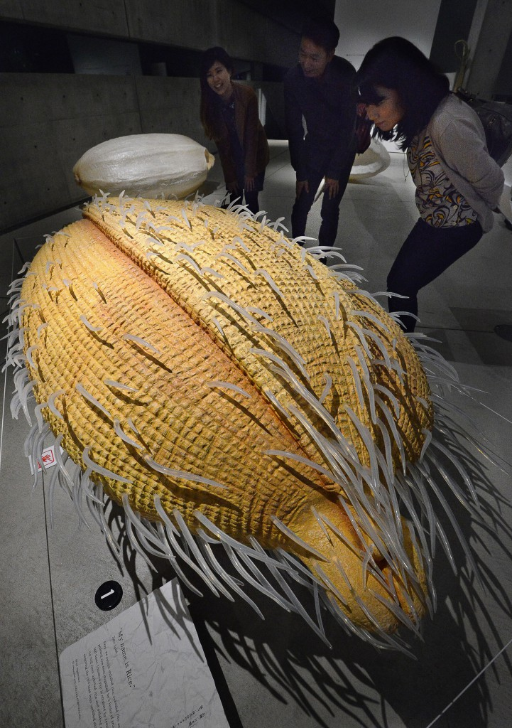 """My name is Rice"" installation is a display of three giant models of unhulled, unmilled and polished Nipponbare rice magnified 360 times, which strongly appeals to visitors that rice is a grain."