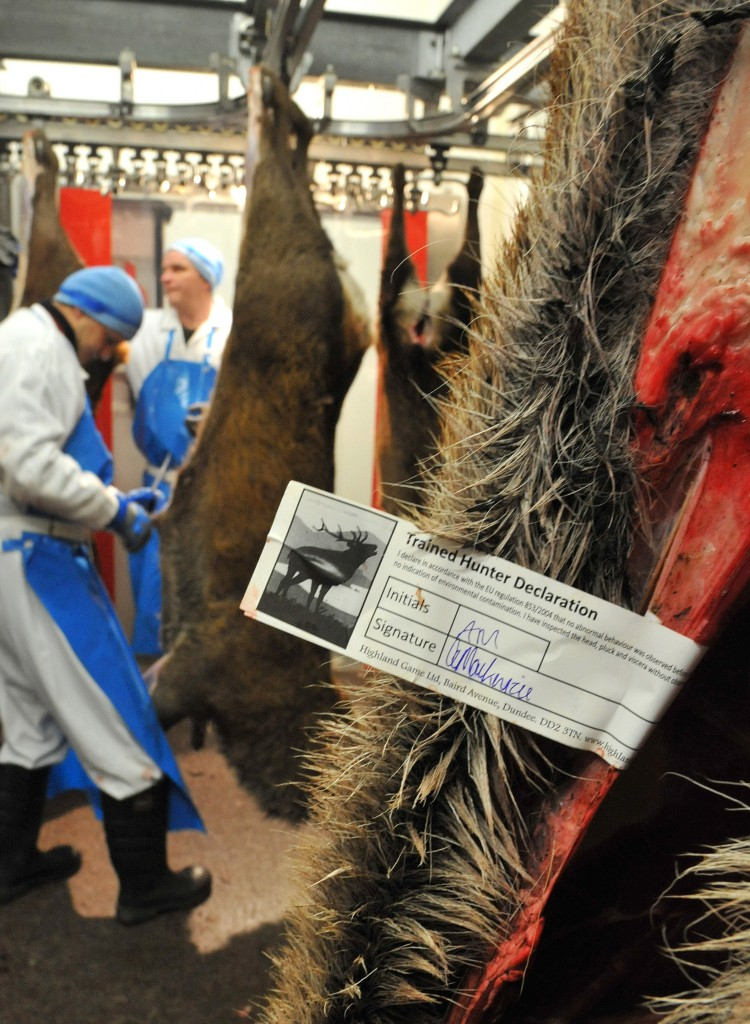 Deer meat is tagged at Highland Game Ltd. in Dundee, Scotland, to show the hunter's ID number and where it is captured, which is required for all marketed venison.