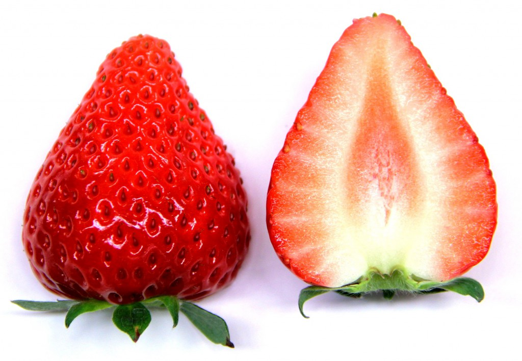 A photo provided by Mie Prefecture Agricultural Research Institute shows a new strawberry variety Yotsuboshi which can be propagated by seeds.
