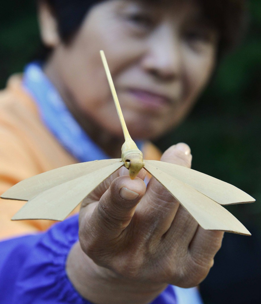 isplay of bamboo dragonflies was another attraction to demonstrate beauty of bamboo.