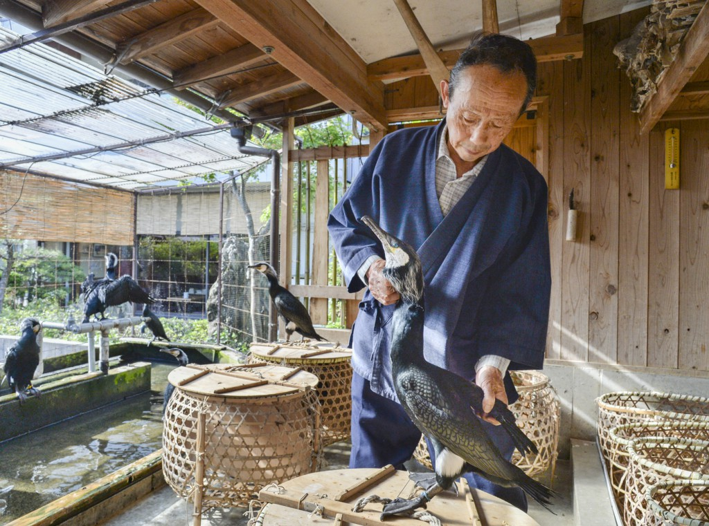 76-year-old representative of six cormorant fishing maters, Junji Yamashita and his cormorants spend time together every day. Fishing masters have a role to demonstrate Japanese heart and soul while keeping 1,300-year-old tradition, he says.