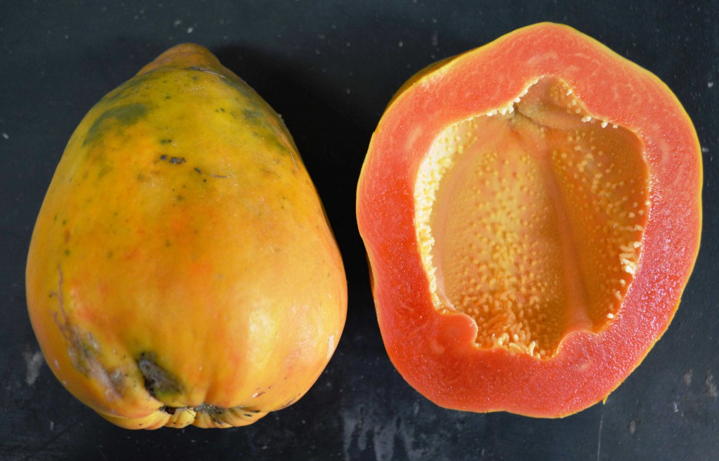 Ishigaki Sango papaya is seedless and has a hollow core